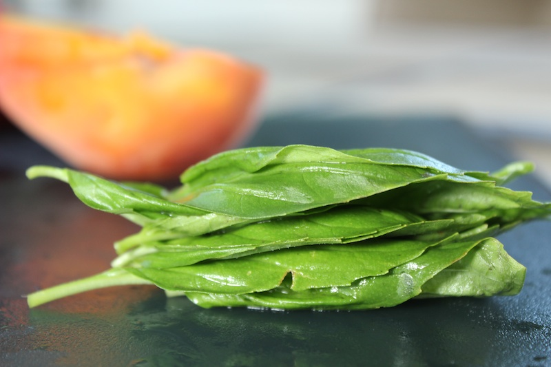 Stack of 8 basil leaves