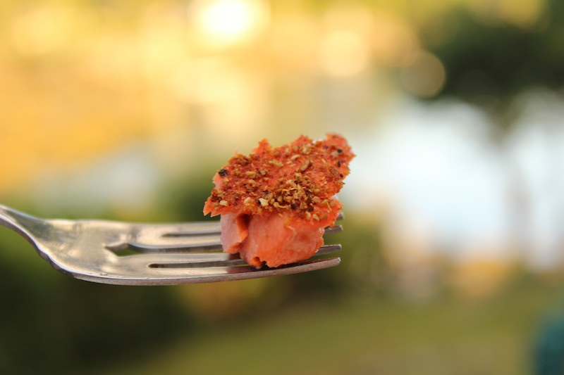 A Bite of Spice Crusted Wild Salmon on A Fork