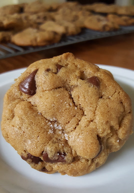 These Chocolate Chip Cookies with Sea Salt are my very favorites, and just barely adapted from Ashley Rodriguez's recipe. They are easy to make, freeze well, chewy and perfectly balanced between sweet and salty, and best when you use dark chocolate. | www.tastyoasis.net